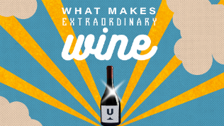 what makes extraordinary wine